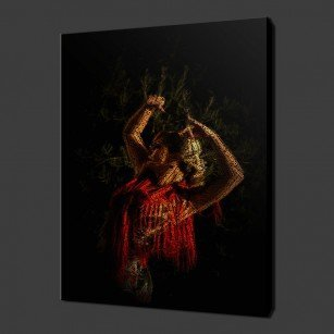 Flamenco Dancer Canvas Print Art