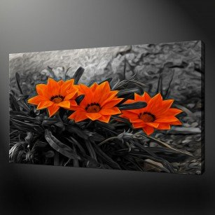 ORANGE WILD FLOWERS CANVAS PRINT PICTURE