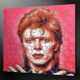 DAVID BOWIE CANVAS PRINT PICTURE WALL ART