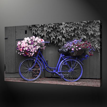 BLUE-BICYCLE-FLOWERS