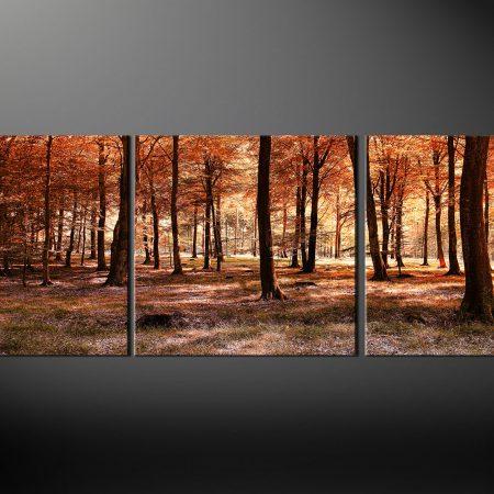 Autumn Forest Landscape Canvas Print
