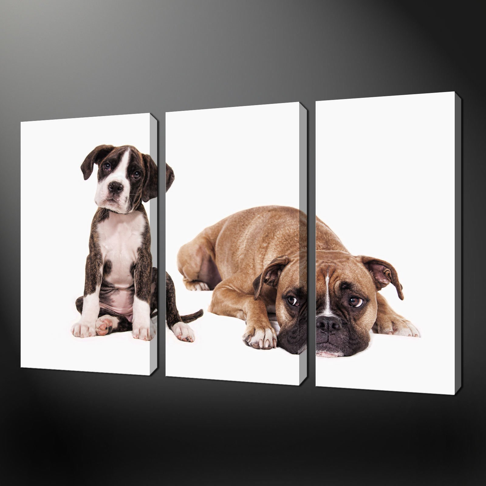 BOXER DOGS 3 PANEL SPLIT CANVAS WALL ART PICTURES PRINTS FREE UK ...