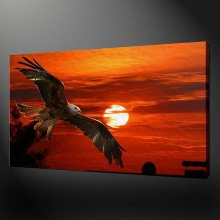 SUNSET EAGLE CANVAS PICTURE PRINT