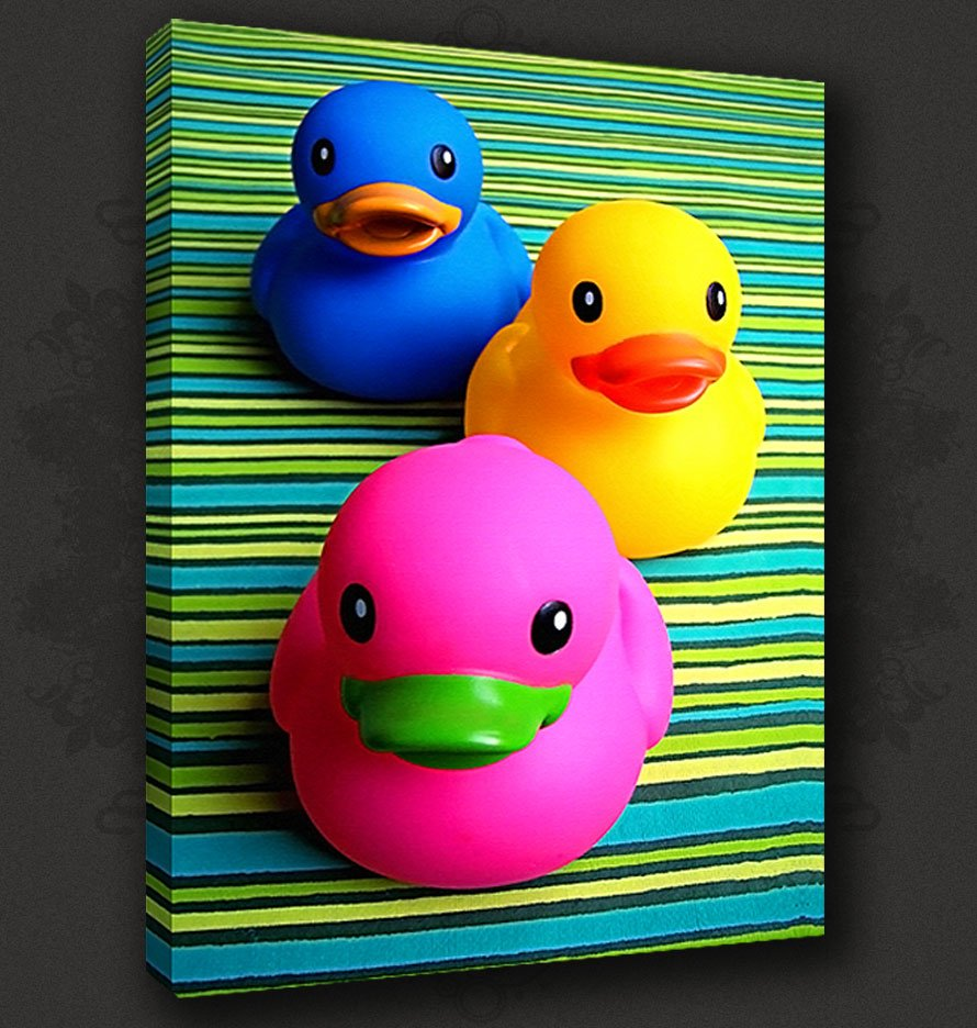Funky Ducks Bathroom Canvas Print Poster Modern Design