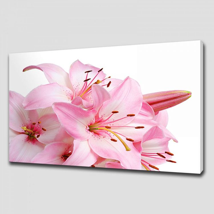 Pink lily floral canvas print picture wall art for Pink wall art