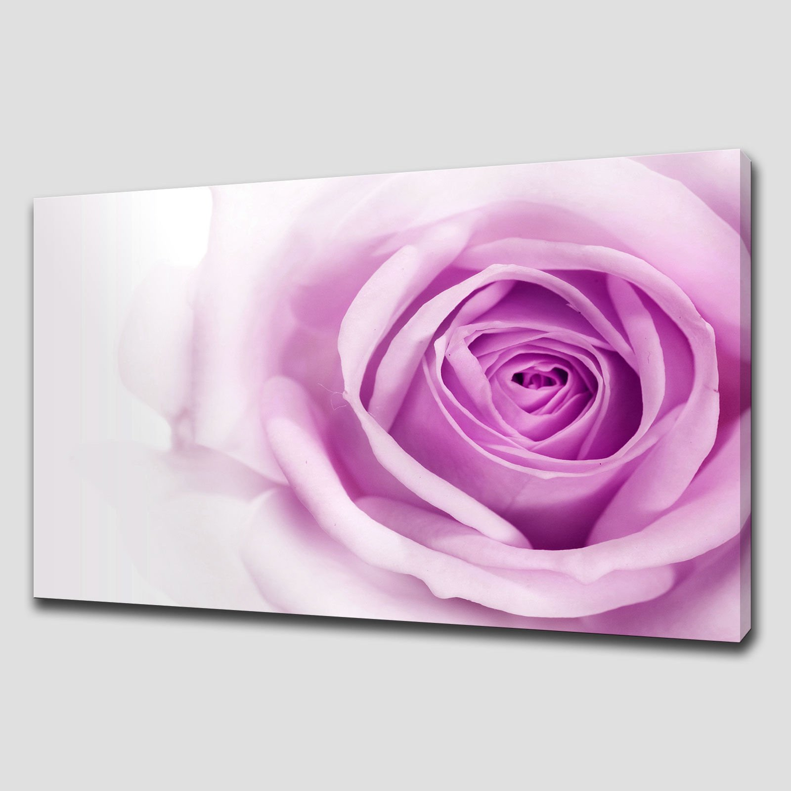 Purple Canvas Wall Art purple rose large canvas wall art pictures prints - canvas print art