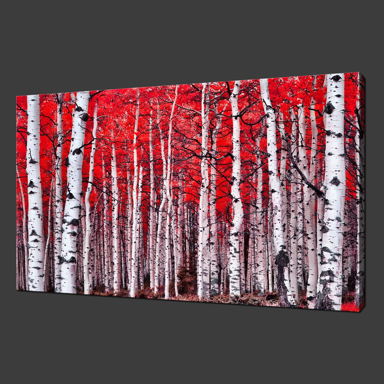 21d71a1560c RED BIRCH FOREST LANDSCAPE MODERN PICTURE CANVAS ...