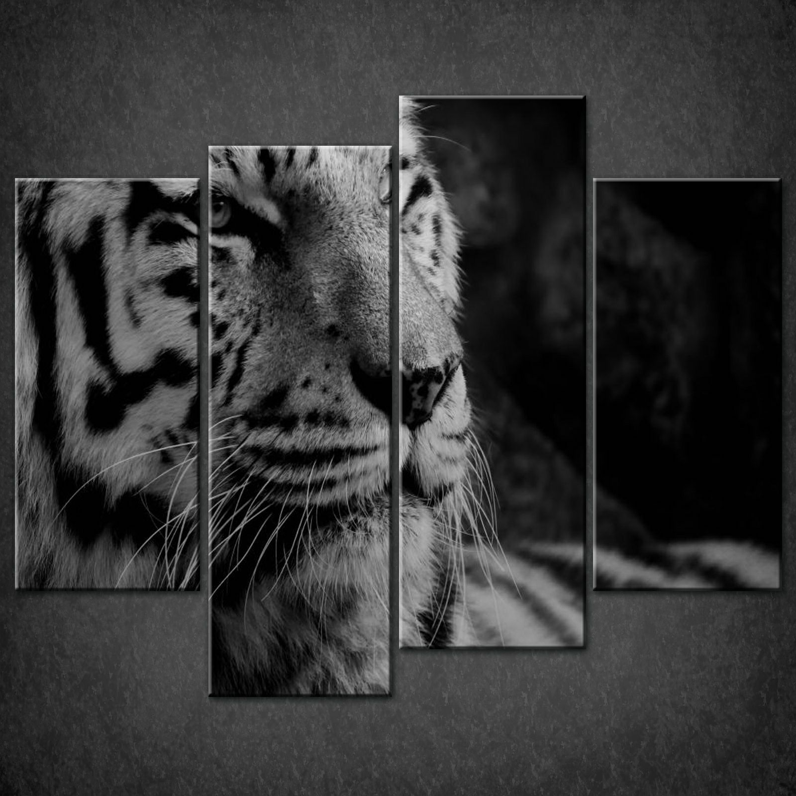 Tiger black white split canvas wall art pictures prints larger sizes available