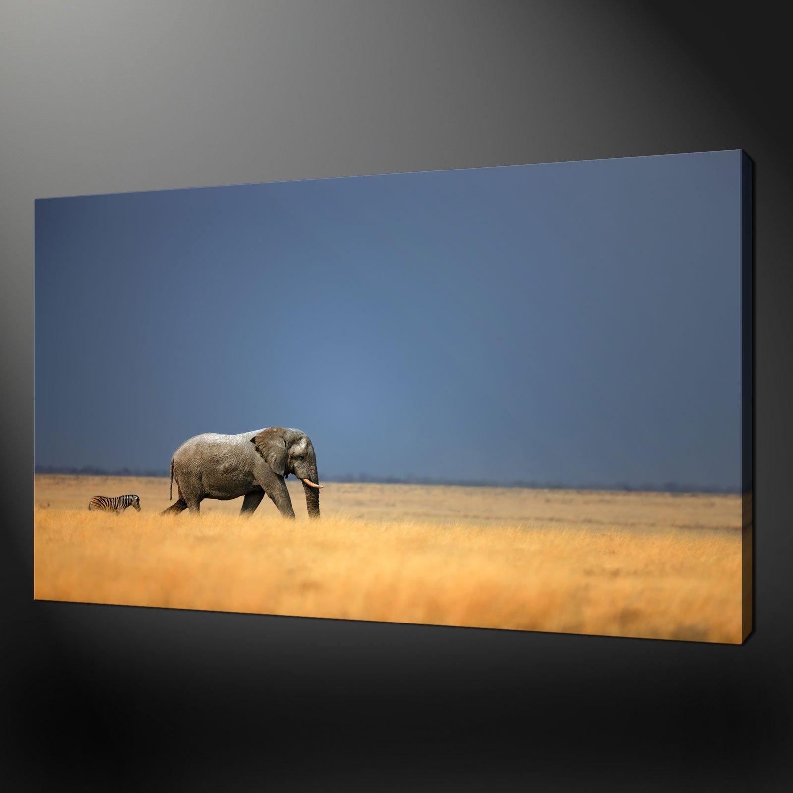 Wall Art Canvas Prints zebra and elephant premium canvas print picture wall art design