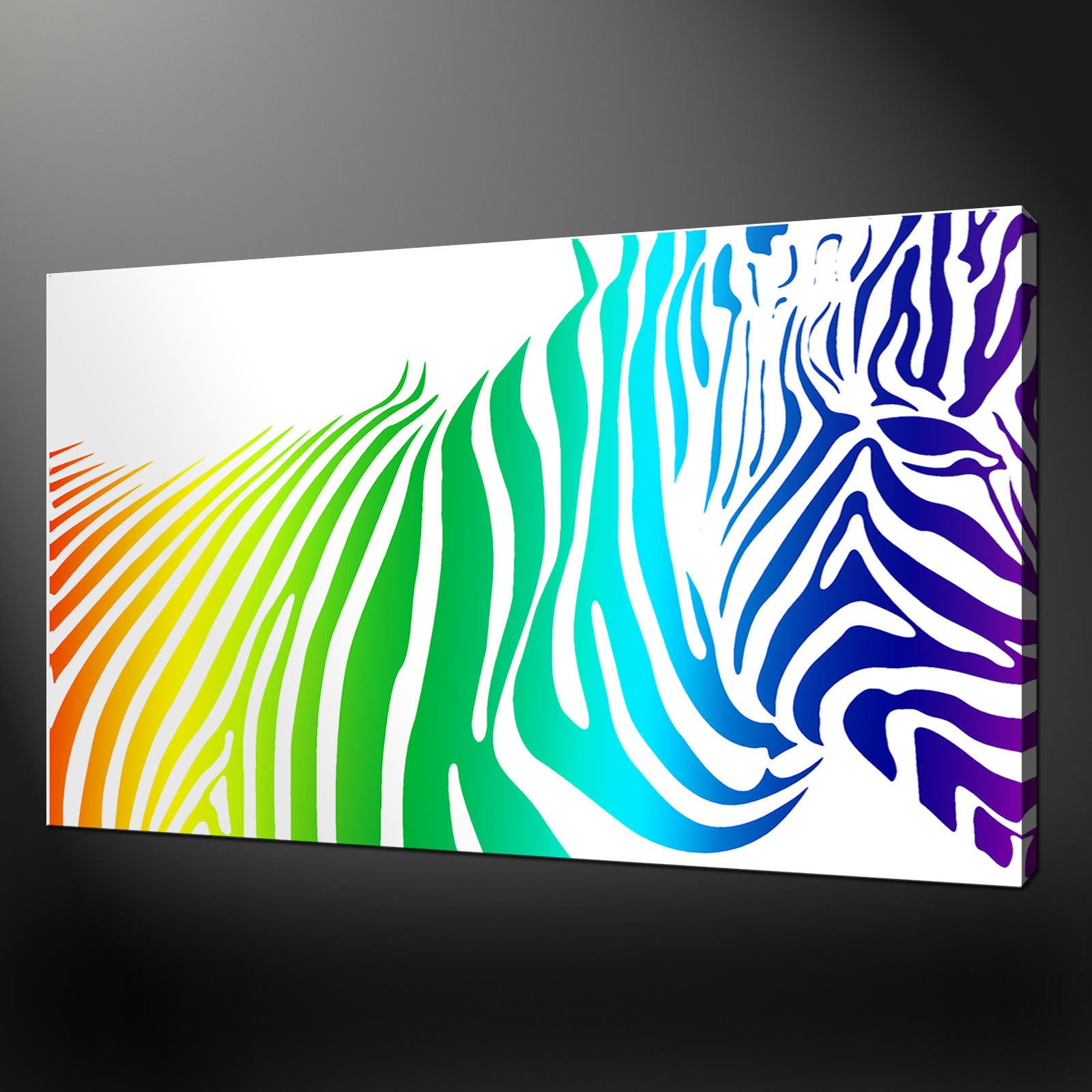 zebra rainbow canvas wall art pictures prints variety - Canvas Design Ideas